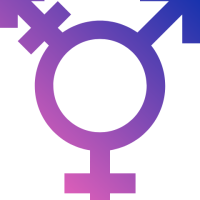 Is It Possible To Transition Genders?
